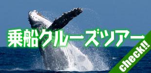 乗船クルーズツアーのイメージ