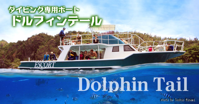 ダイビング専用ボート【Dolphin-Tail】ドルフィンテール